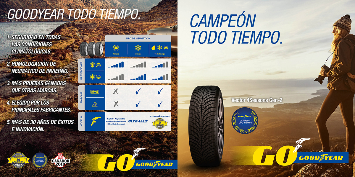 banner-goodyear-campeon